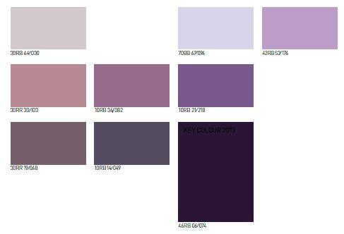 violetas2013